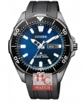 CITIZEN AUTOMATIC NY0075-12L